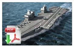 Futur Navy