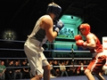 Royal Marines' boxers battle it out to be the Corps Champ
