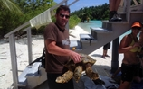 Submariners from HMS Trenchant help environmentalists research giant turtles